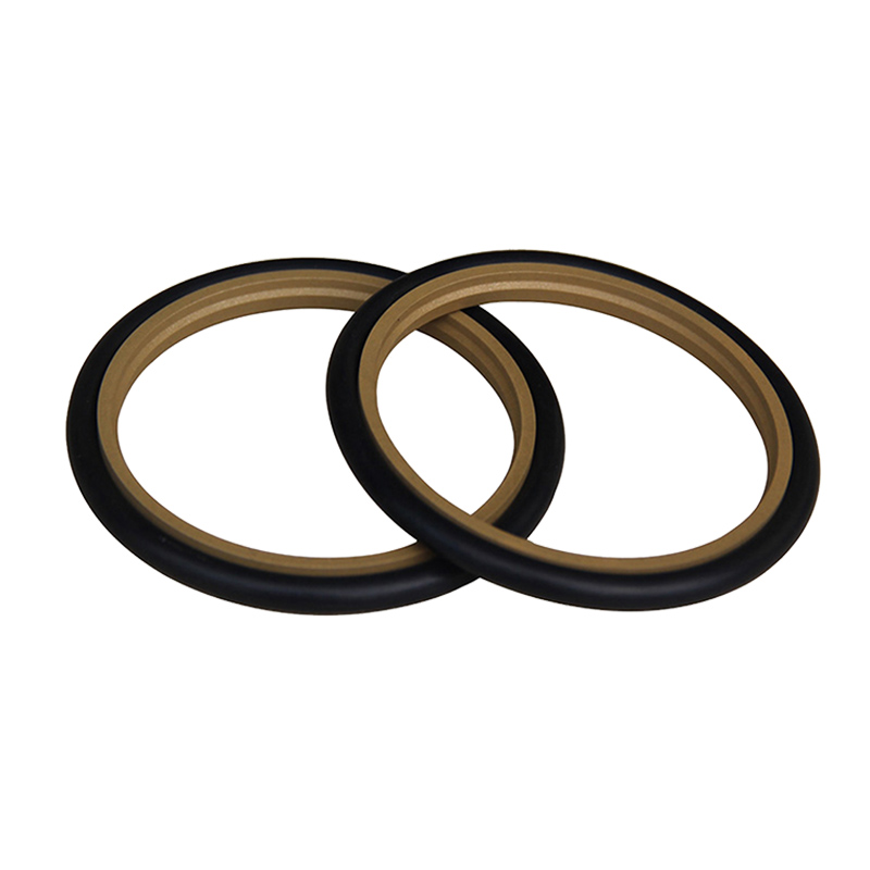 [Section]Is the guide ring a commonly used reciprocating seal?
